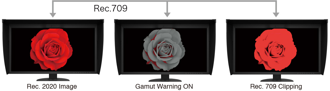 CG319X Gamut Warning